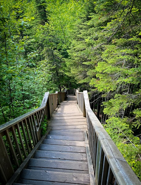 staircase to devil's kettle